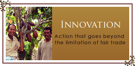 INNOVATION - Action that goes beyond the limitation of fair trade