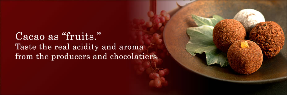 Cacao as fruits. Taste the real acidity and aroma from the producers and chocolatiers