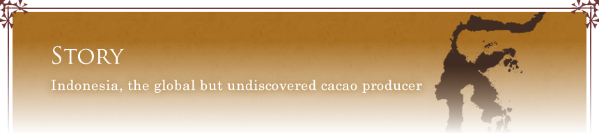 Indonesia, the global but undiscovered cacao producer
